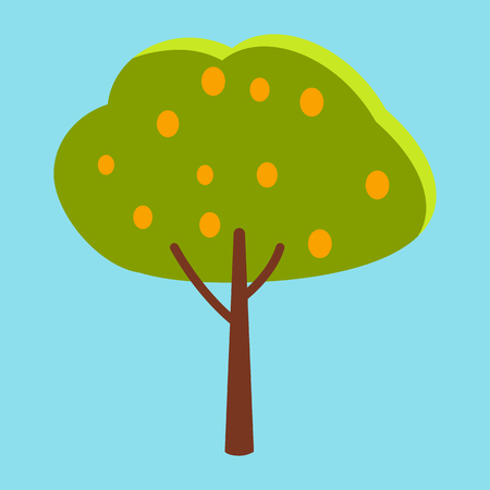 Tall Tree with Green Leaves and Orange Fruits