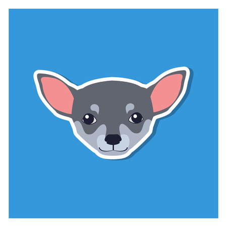 Little Head of Chihuahua Dog Front View Flat Icon
