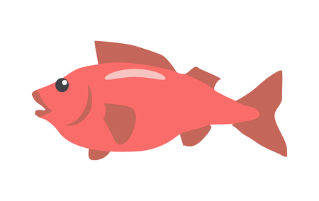 ichthyology: Red Fish Cartoon Flat Vector Illustration Illustration