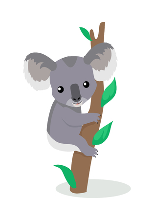 Koala Cartoon Flat Vector Illustration Illustration