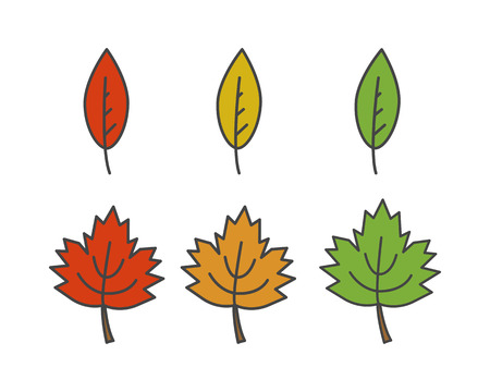 Colorful Leaves Flat Vector Icons Set Illustration