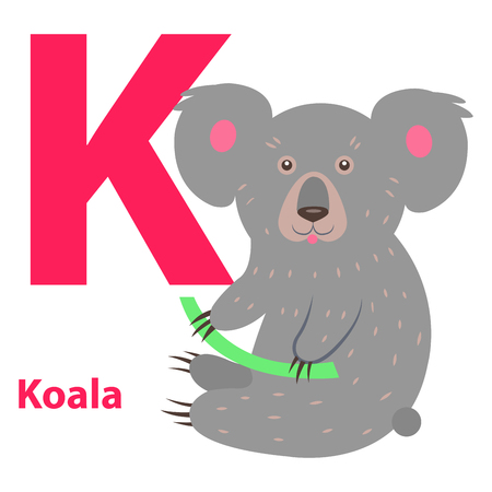 Funny gray koala with letter K alphabet poster. Wild animal holding green stem. Educational card for learning English. Vector illustration of colorful typography flat design, kindergarten poster. Çizim