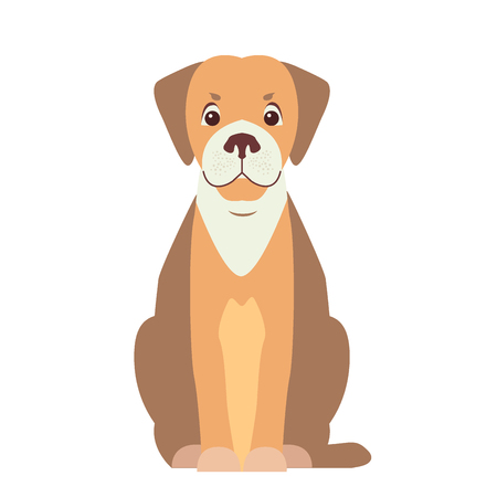 Happy cute hunting dog sitting with smiling muzzle flat vector isolated on white background. Lovely purebred pet illustration for animal friends and companions concepts, pet shop ad 向量圖像