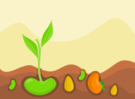 Plants growing from under ground colorful vector illustration in flat design Illustration