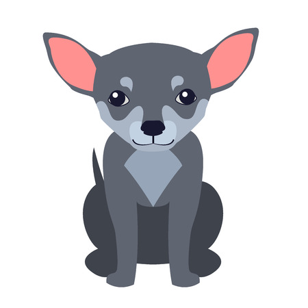 Cute Chihuahua Dog Cartoon Flat Vector Icon