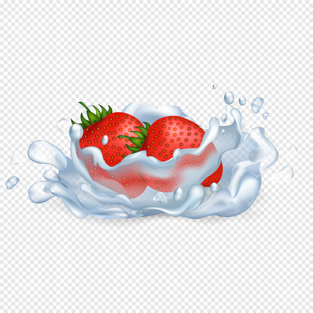 Ripe juicy strawberries fall in water with splash that spreads drops all over isolated vector illustration on transparent background.