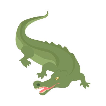 악어 만화 캐릭터입니다. 무서운 녹색 악어 오픈 입으로 플랫 격리 된 벡터. 아프리카 동물 군. 악어 아이콘입니다. 동물원 광고, 자연 개념, 야생 동물