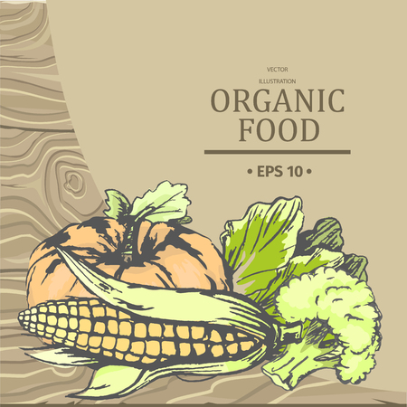 Organic Food Vector Advertising with Vegetables