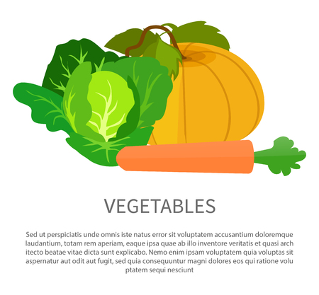 Vegetables Poster with Pumpkin, Cabbage and Carrot