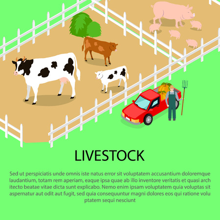 Farm with Livestock and Text Information below Illustration