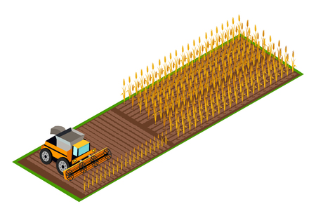 Combine Harvester Gathering Wheat on Field Vector Illustration