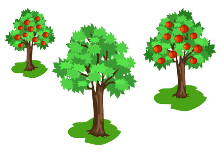Apple Tree with Green Leaves and Red Fruits Set Illustration