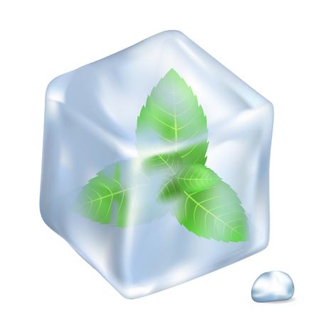 Bladeren van Spermint in ijs geïsoleerde illustratie