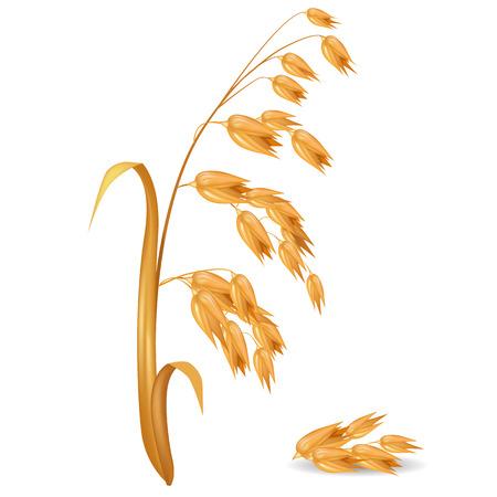 Oat Ear Plant met stapel van granen vectorillustratie Stock Illustratie