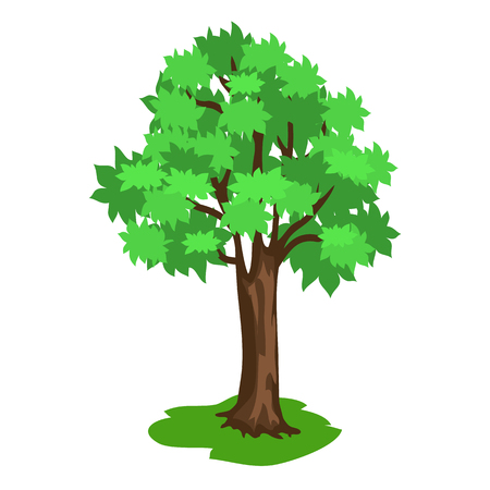 Green Tree with Broad Brunches and Brown Trunk