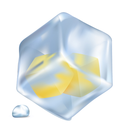 Frozen Lemon Cubes in Ice Isolated Illustration Ilustração