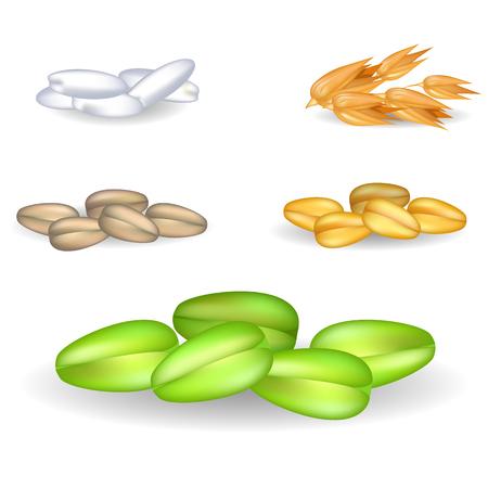 小さなヒープ イラストで有機穀物を設定します。  イラスト・ベクター素材