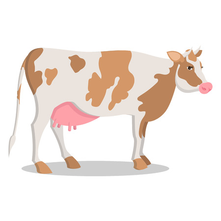 Cute Cow Grown on Farm Isolated Cartoon Illustration Illustration