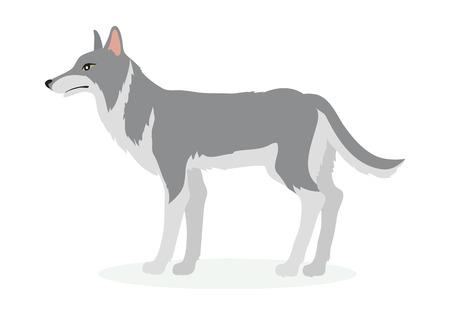 Illustrazione Vettoriale Cartoon Wolf in Design Piatto