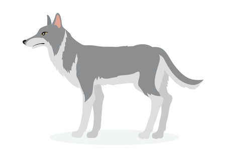 Wolf Cartoon Vector Illustration in Flat Design