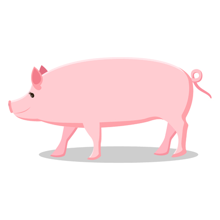 Pink Pig with Curly Tail Isolated Illustration Illustration