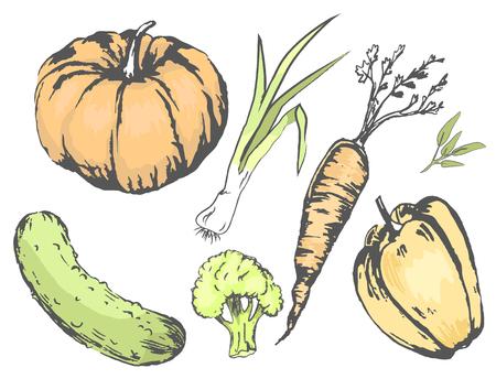 Graphic Agricultural Harvest of Vegetables Set 向量圖像