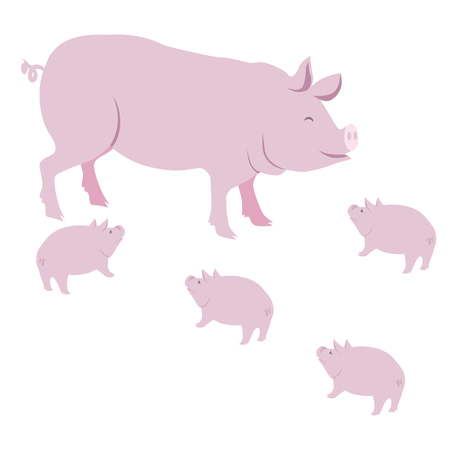 Pink Pig and Piggies Vector Isolated on White