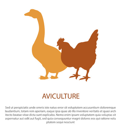 Agriculture Poster with Silhouette of Hen Goose Иллюстрация