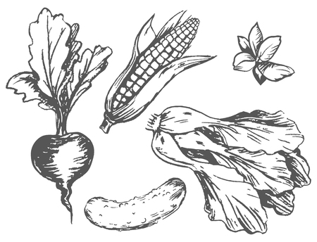 Colorless Graphic Vegetables at Random on White Ilustração