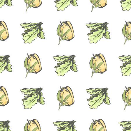 ピーマン、レタスの葉のシームレス パターン