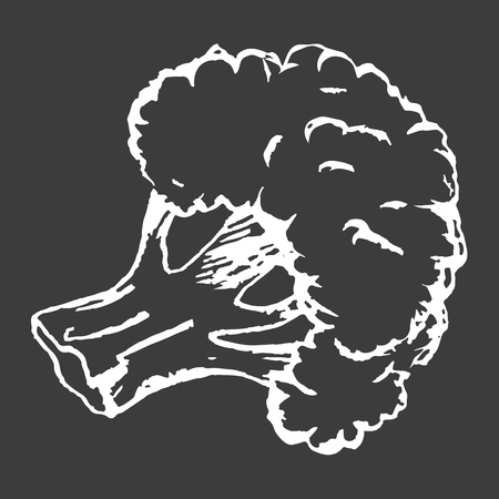 Healthy Broccoli Isolated White Outline Sketch Illustration