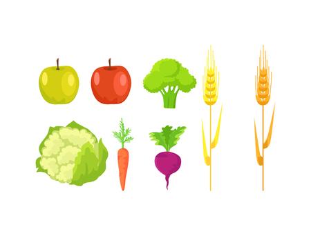 Set of different fruits and vegetables vector illustration Illustration