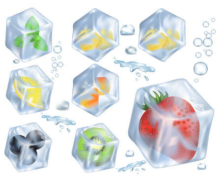 Set of fruits, berries and herbs frozen on ice vector illustration