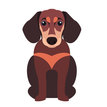 Cute Dachshund Dog, Cartoon Flat Vector Icon Illustration