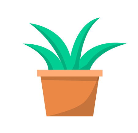 Green Aloe Plant in Clay Pot Vector Illustration