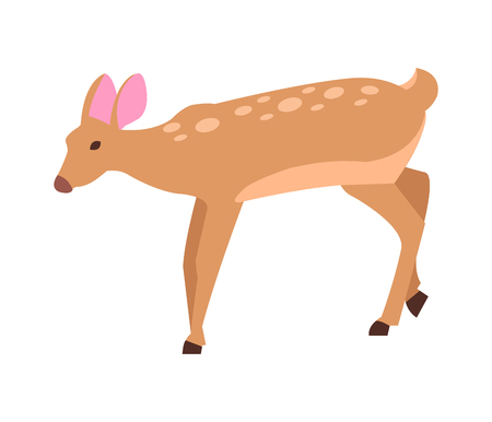 Adult Doe Isolated Vector in Cartoon Style Icon
