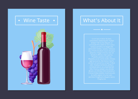 Wine Taste Whats About It Vector Illustration