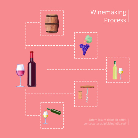 Winemaking process text and icons of barrel and grapes, bottle and corkscrew, pouring drink in glass, connected by lines vector illustration
