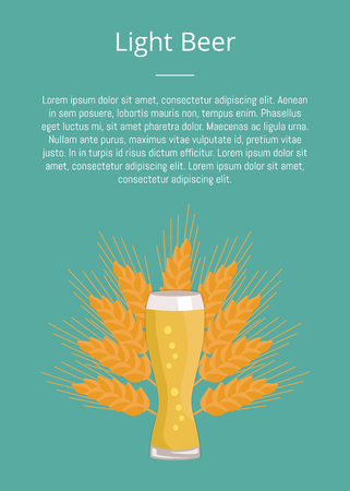 Light Beer Weizen Glass on Ears of Wheat Vector