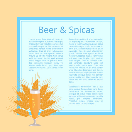 Beer and spices poster with glass on background of ears of wheat with place for text. Refreshing alcoholic beverage in transparent glassware