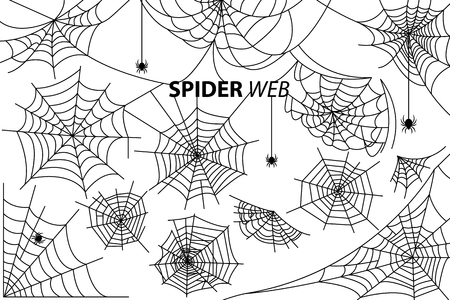 Spider web collection of vector illustrations with inscription isolated on white background. Black silhouettes of small multi-legged arthropods hanging