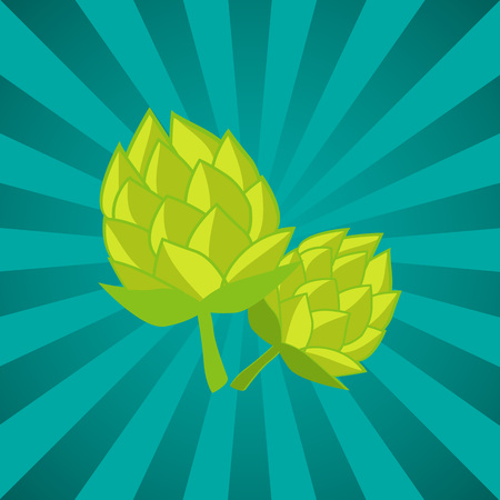 Green Humulus Hop Vector Illustration Isolated Ray