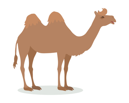 Bactrian Camel Cartoon Icon in Flat Design