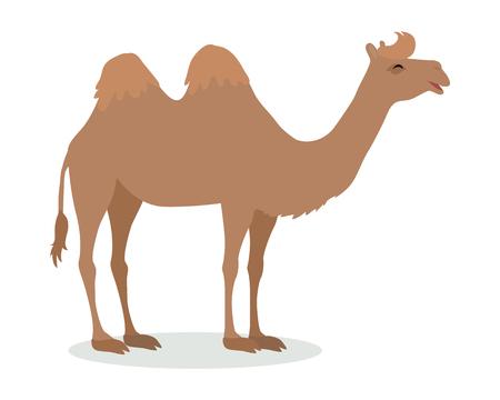 Bactrische Camel Cartoon pictogram in plat ontwerp