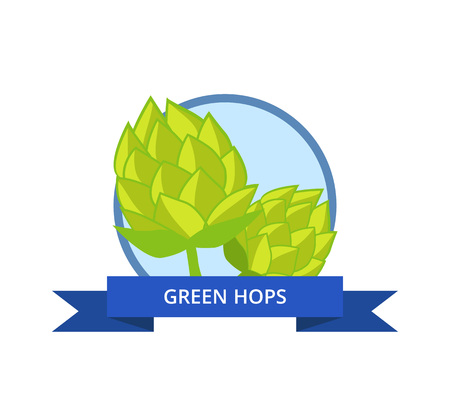 Green hops logo vector isolated in circle with blue ribbon. Plant widely cultivated for use by brewing industry, main flavor ingredient in beer