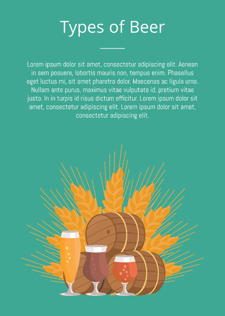Types of beer degustation vector illustration on green. Wheat, wooden barrels and three glasses draught pale and dark beers on background of wheat.