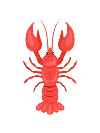 Red crayfish vector illustration isolated on white background. Crawfish or crawdads, freshwater lobster, mudbugs or yabbies seafood in flat design