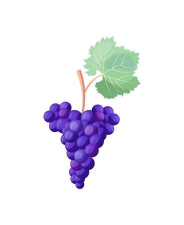 Icono de uvas rojas maduras en la ilustración vectorial Foto de archivo - 90602858