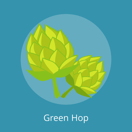 Green Hop Vector Illustration Isolated Icons
