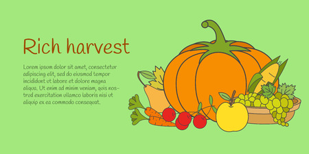 Rich Harvest Banner with Fruits and Vegetables Çizim